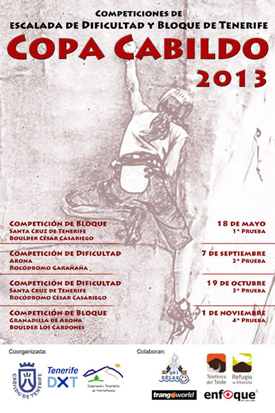 Cartel CC2013 web